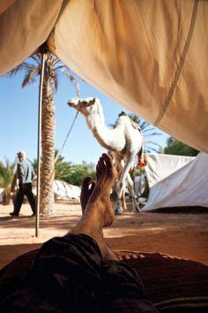 An amazing must...Tunisia
