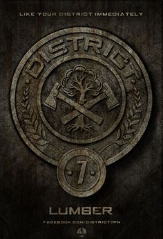 District 7: Lumber
