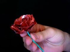 Soda Can Rose