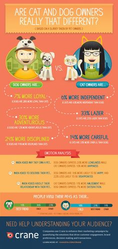 Are Cat and Dog Owners Really That Different?