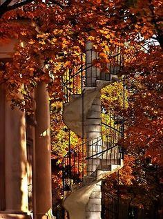 Autumn Staircase