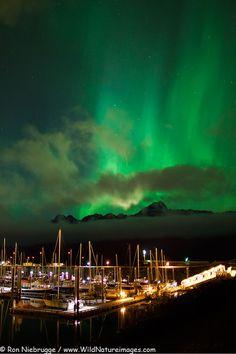 The Northern Lights over the Seward, Alaska harbor.