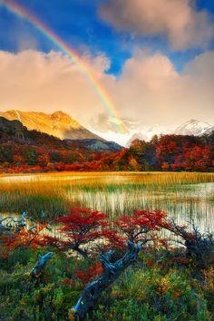 Los Glaciares National Park, Santa Cruz Province, Argentina