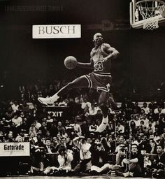 MJ destined to fly