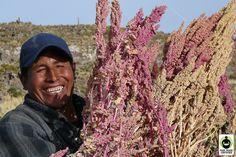 Its OK to eat (Fair Trade Certified) quinoa. See how Fair Trade is helping improve the lives of Bolivian quinoa farmers like Attilio Perez.