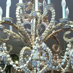 sea shell chandelier ♥