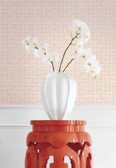 Taza #wallpaper in Coral #thibaut