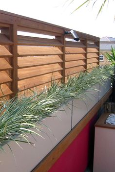 Privacy wall and plants