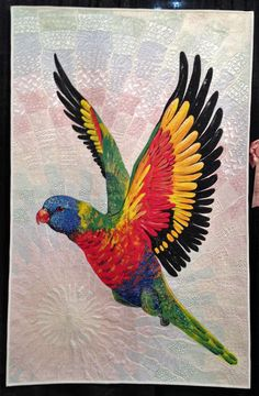 Rainbow Lorikeet by Helen Godden of Latham, ACT, Australia