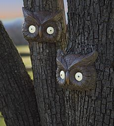 glowing-owl-eyes-halloween-tree-face.  Plow and Hearth