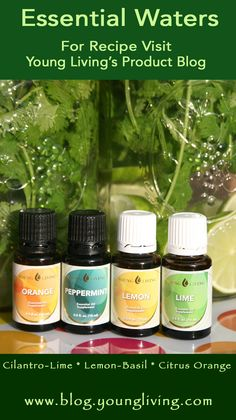 Cool Off this Summer with my Essential Waters Recipe with Young Living Essential Oils - https://blog.youngliving.com/recipe-essential-waters/#.UfJ_h7_e7zI