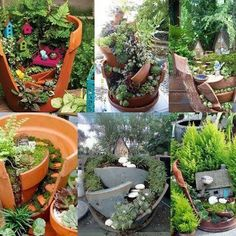 Mini jardin dans de vieux pots.