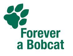 ou bobcat, ohio university bobcats, place, bobcat pride