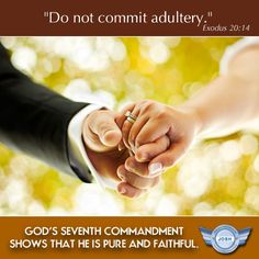 "the seventh commandment of the bible The seventh commandment ""you shall not steal"" what does this mean ""we should fear and love god, and so we should not rob our neighbor of his money or property."