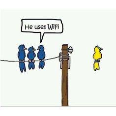 lol Wireless... I get it! :)