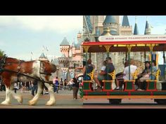 Side by side split-screen video of Disneyland and Magic Kingdom at Walt Disney World LOVE this!!