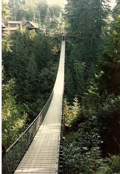 Capilano Suspension Bridge, Vancouver, BC... I always wanted to go on this!