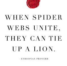 When Spider Webs Unite