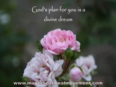 """God's plan for you is a Divine dream""......'Riding Into The Future' a collection of joy filled and blessing quotes available from  www.magnificatmealmovement.com"