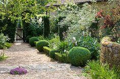 Rosemary Alexander's Hampshire garden