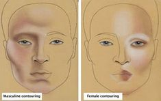 Phyllis Cohen's lesson on facial contouring.  it's the same face template!