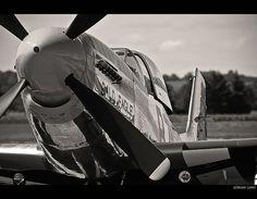 Adrian Lang - P-51