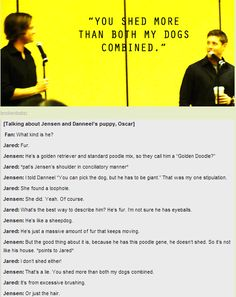 [GIF] J2 talk about dog hair vs. Jared's hair and semi-manly dogs!