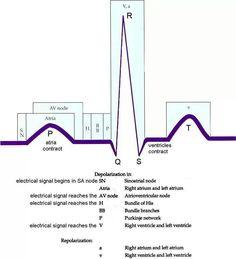 Understanding telemetry
