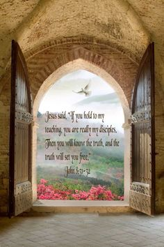 """Jesus said, """"If you hold to my teaching, you are really my disciples. Then you will know the truth, and the truth will set you free."""" John 8:31-32"""