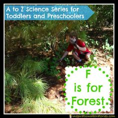 F is for Forest - part of the A to Z Science Series for Toddlers and Preschoolers at Inspiration Laboratories.