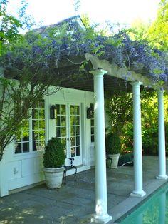 Wisteria covered porch.  hampton hostess: PORTFOLIO