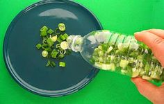 Freeze chopped green onions in a plastic bottle for quick access.