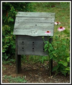 Bee's hive, Saltbox Farm Garden, Howard City, MI