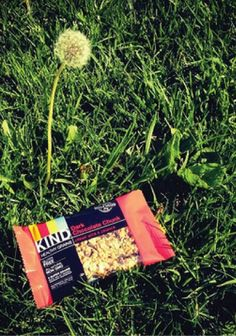 KIND Bars: Dark Chocolate Chunk makes a perfect spring snack