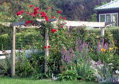 Google Image Result for http://www.mooseyscountrygarden.com/garden-arches/pergola-red-rose.jpg