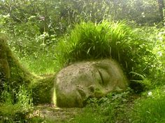 Woodland sculptures: carefully groomed moss art in the Lost Gardens of Heligan (England).    Side note: Moss obtains nutrients from the air because they have no true roots. Plants require nothing more than shade, acidic soil, and adequate moisture to flourish.