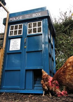 Chicken coop TARDIS. Because chickens can be time lords, too. With instructions. chicken coops, tardis, fan