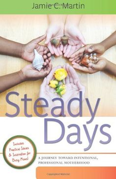 Steady Days: A Journey Toward Intentional, Professional Motherhood by Jamie C. Martin