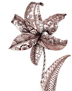 Henna Lily Stretched Canvas