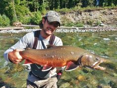 Elk River Trib Bull Trout www.simmsfishing.com river trib, elk river