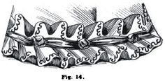 1895.  The Art of Dressmaking.  Figure 14 pictures a wide, double ruche the same as seen in figure 1.  A narrow row of passementrie finishes the edge and a bias strip of velvet with knots placed at equal intervals is tacked on through the centre.  Length of material required to make the rich, one and three-quarter times around the skirt, or one and three-quarter yards to make one yard of trimming.