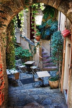 Lush Courtyard, Provence, France