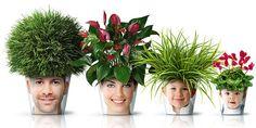 family flower pots