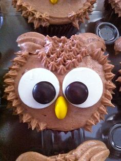 Owl Birthday Cupcakes. Am I too old to have these for my birthday?