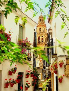 Cordoba, Andalusia, Spain  photo via austen