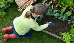 Essential Marketing tips for Gardeners
