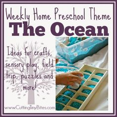 Ocean Theme- Weekly Home Preschool.  Crafts, activities, field trip, picture books and more!  Perfect amount of EASY activities for one week of an ocean unit home preschool.