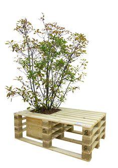 DIY pallet bench + planter