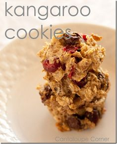 "No Sugar ""Kangaroo"" cookies with cranberries, walnuts, and chocolate chips."