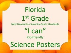 Florida 1st First Grade Science Standards NGSSS Orange Border